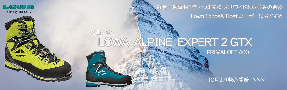 LOWA ALPINE EXPERT GTX